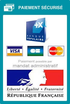 modes de paiements sur handinorme, dont le mandat administratif