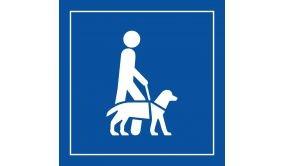 Picto PI PF 046 - Accessibilité, chien guide ou d'assistance - en Vinyle Souple Autocollant ISO 7001