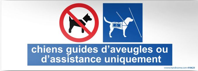 Pictogramme chiens guides d'aveugles